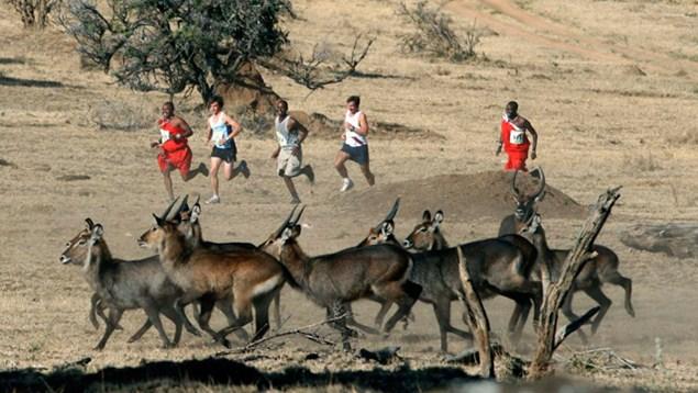世界上最古怪的7个跑步比赛