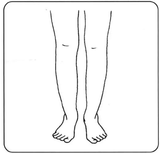 腿的简笔画怎么画