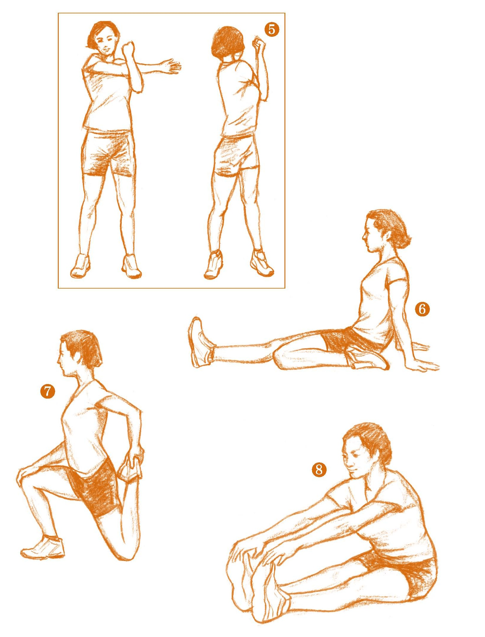 热身运动和拉伸运动都是怎么做的